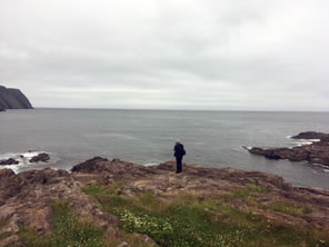 Photo of Logy Bay outcroppings